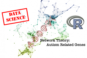 Network Theory and Autism